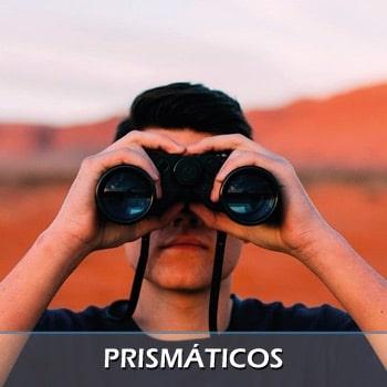 Binoculares y prismáticos